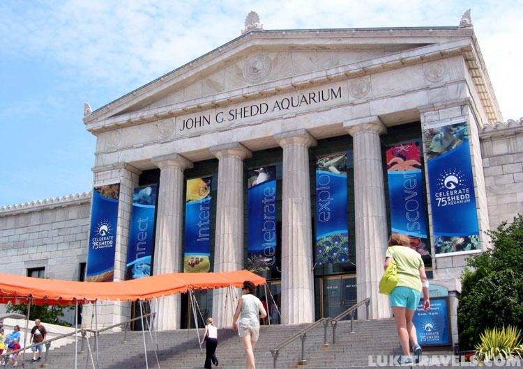 Chicago Museums Photos Field Museum Shedd Aquarium